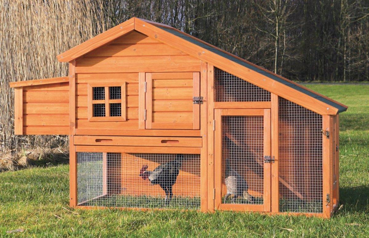 Manfaat Memilih Menggunakan Metode Umbaran untuk Kandang Ayam Anda
